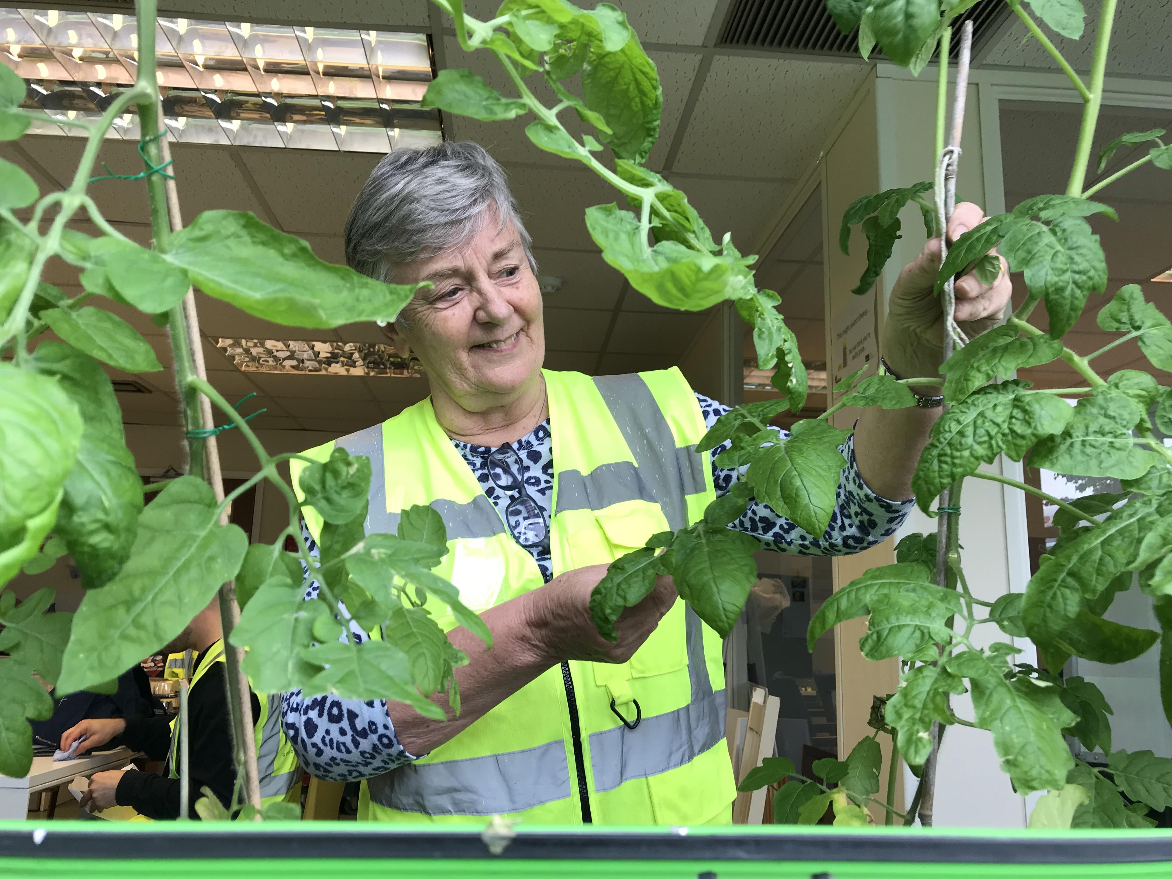 Bernadette gardening club