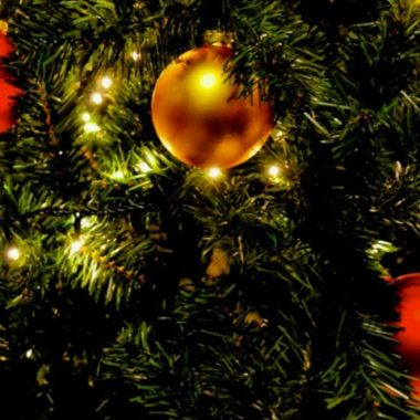 Tbg christmas tree