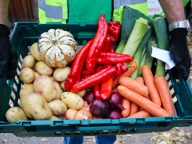Volunteer at The Felix Project with a crate of vegetables