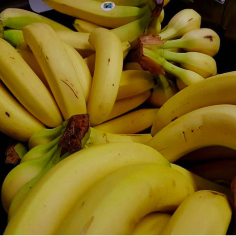 Sam volunteering so many bananas